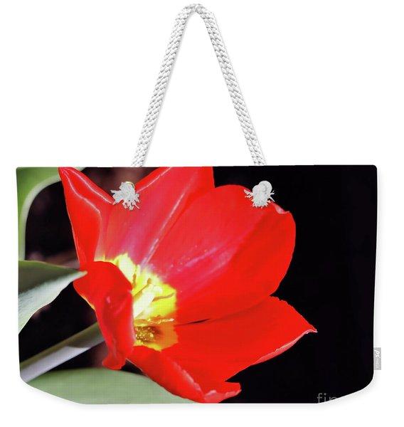 Simply Spring Weekender Tote Bag