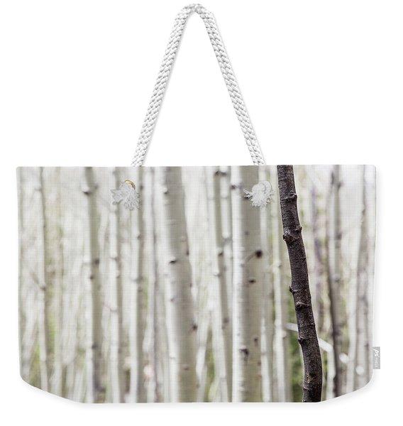 Single Black Birch Tree Trunk Weekender Tote Bag
