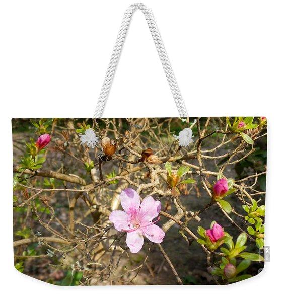 Single Pink Bloom Bush Weekender Tote Bag