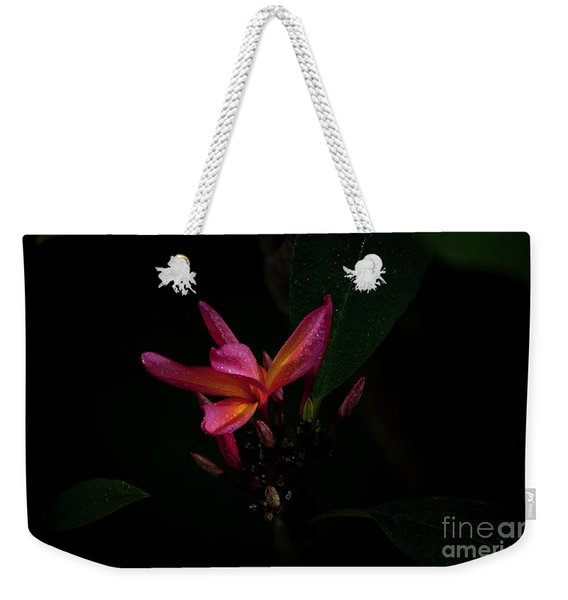 Single Red Plumeria Bloom Weekender Tote Bag