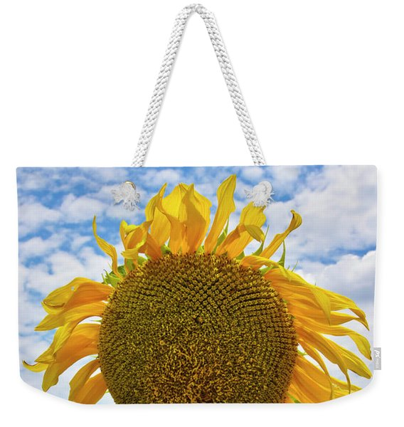 Weekender Tote Bag featuring the photograph Sister Golden Hair by Skip Hunt