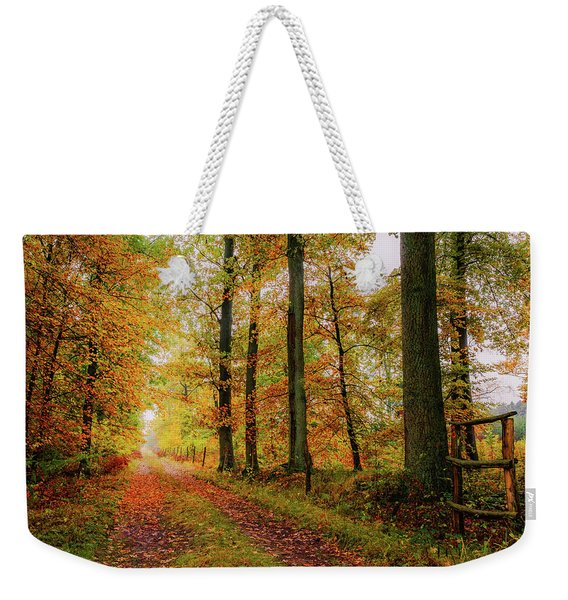 Weekender Tote Bag featuring the photograph Site 6 by Dmytro Korol