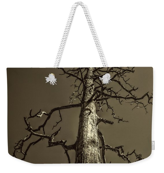 Skeletal Tree Sedona Arizona Weekender Tote Bag