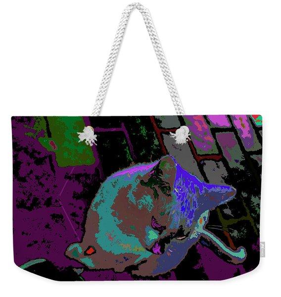 Skid Row Kitten Weekender Tote Bag