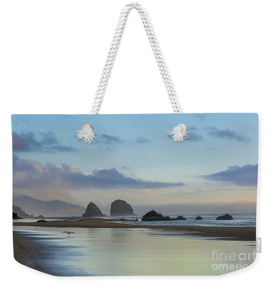 Skimming Along The Beach At Sunset Weekender Tote Bag