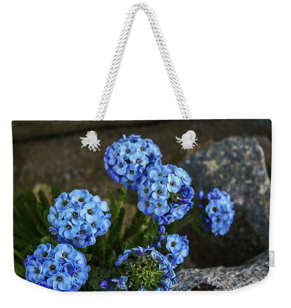 Sky Pilot, How High Can You Fly Weekender Tote Bag
