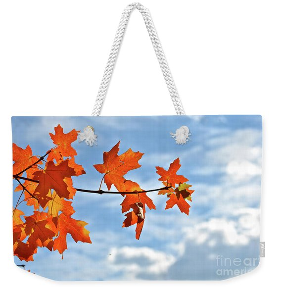 Sky View With Autumn Maple Leaves Weekender Tote Bag