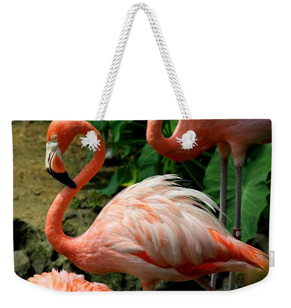 Sleeping Flamingo Weekender Tote Bag