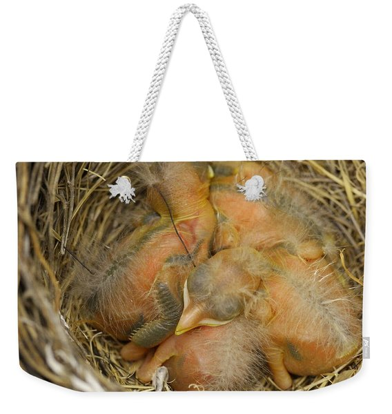 Sleeping Robins Weekender Tote Bag