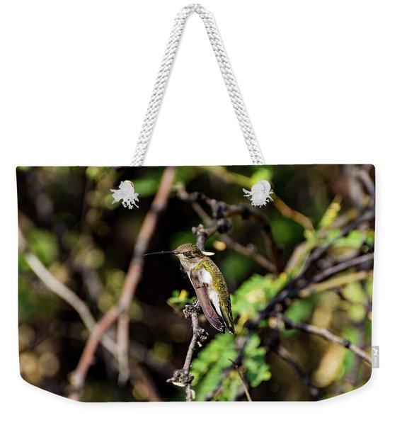 Sleepy Hummingbird Weekender Tote Bag