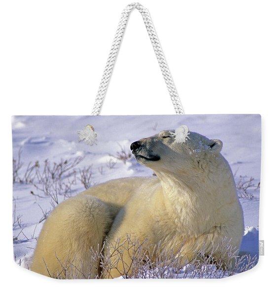 Sleepy Polar Bear Weekender Tote Bag