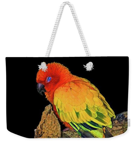Sleepy Sun Conure Weekender Tote Bag