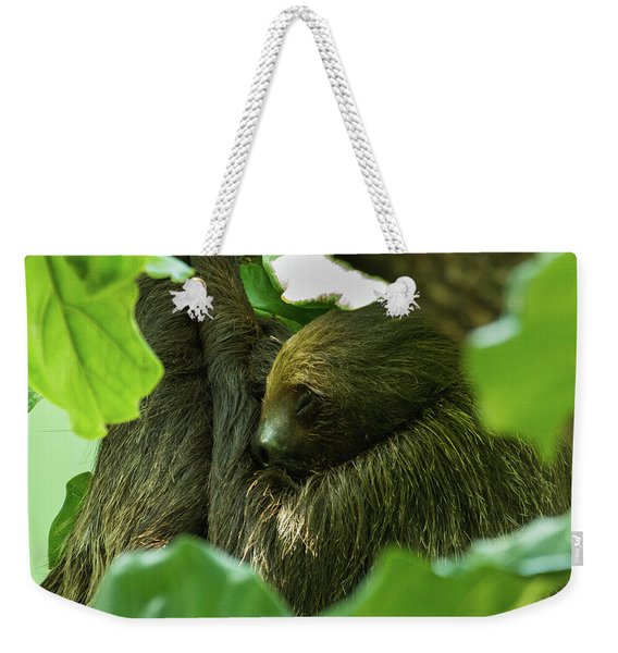Sloth Sleeping Weekender Tote Bag