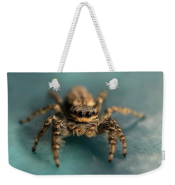 Weekender Tote Bag featuring the photograph Small Jumping Spider by Jaroslaw Blaminsky