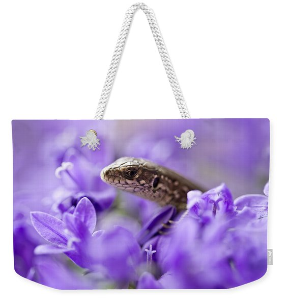 Weekender Tote Bag featuring the photograph Small Lizard by Jaroslaw Blaminsky