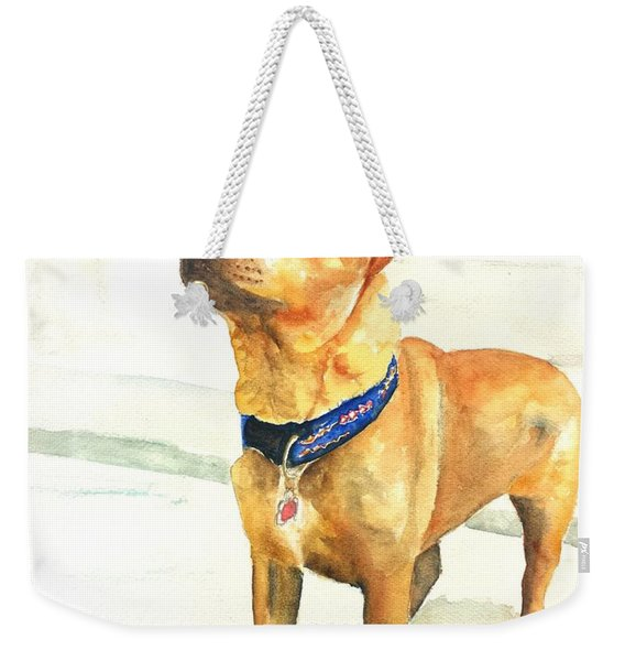 Small Short Hair Brown Dog Weekender Tote Bag