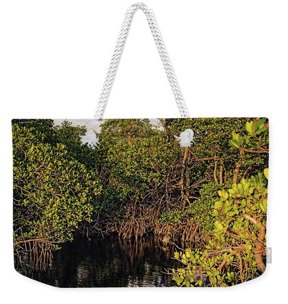 Small Waterway In Vitolo Preserve, Hutchinson Isl  -29151 Weekender Tote Bag