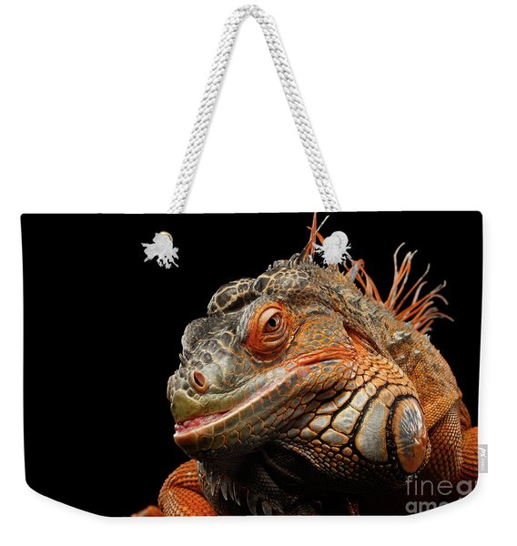 smiling Orange iguana isolated on black  Weekender Tote Bag
