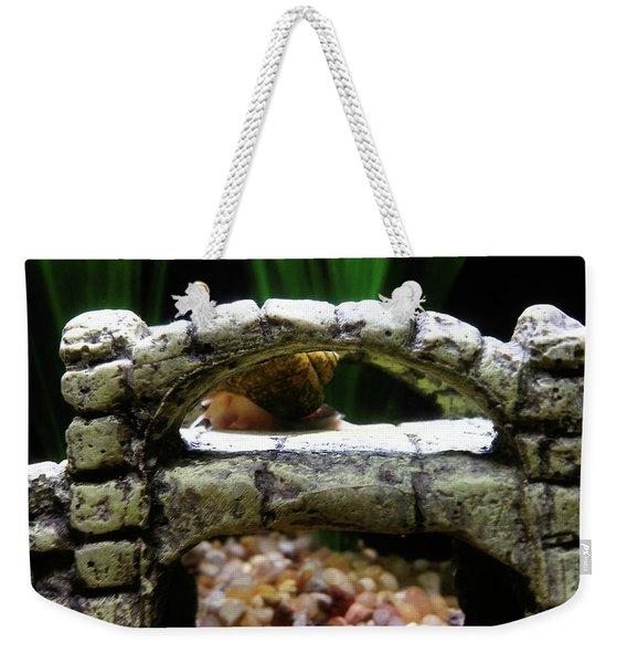Snail Over A Bridge Weekender Tote Bag