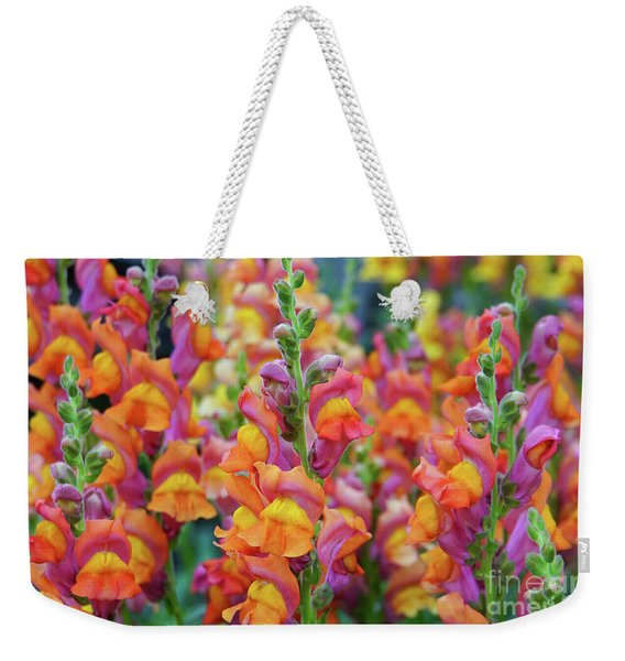 Snapdragon Rainbow Weekender Tote Bag