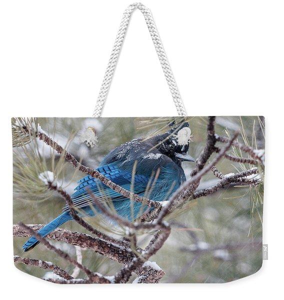Snowy Bluejay  Weekender Tote Bag