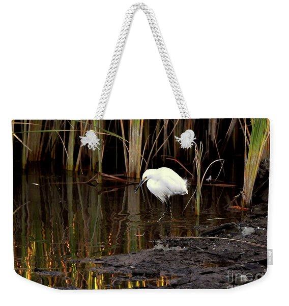 Snowy Egret In Late Afternoon Weekender Tote Bag