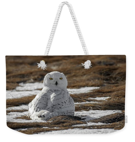 Snowy Owl,marsh Weekender Tote Bag