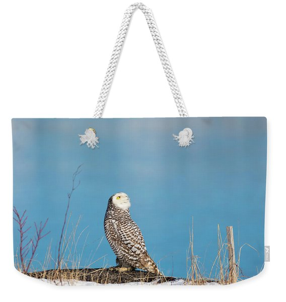 Snowy Watching A Plane Weekender Tote Bag