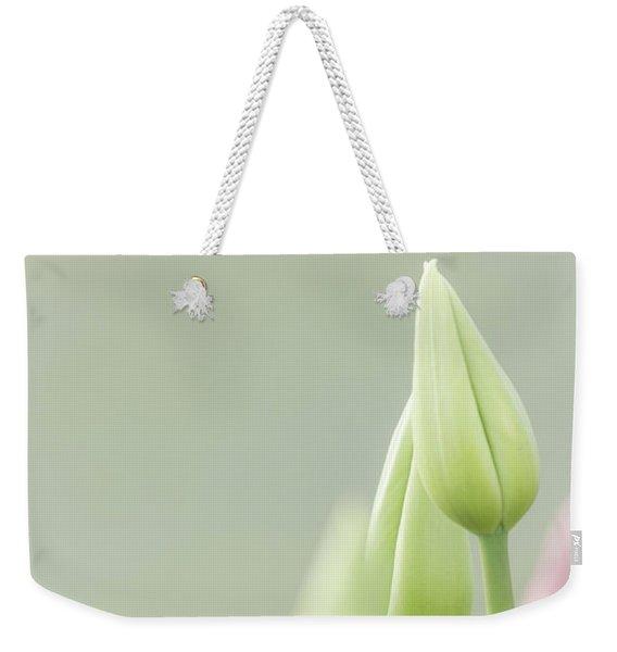 Soft Pastels Weekender Tote Bag