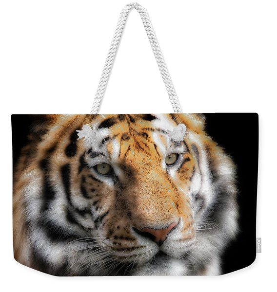 Soft Tiger Portrait Weekender Tote Bag