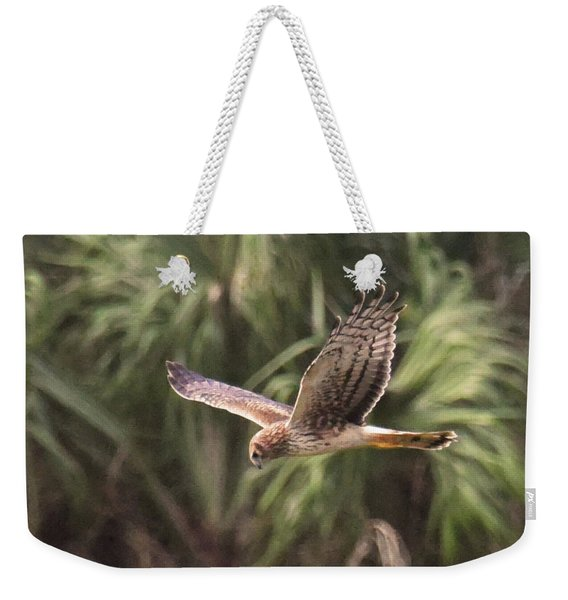 Weekender Tote Bag featuring the photograph Something Is Down There by Sally Sperry
