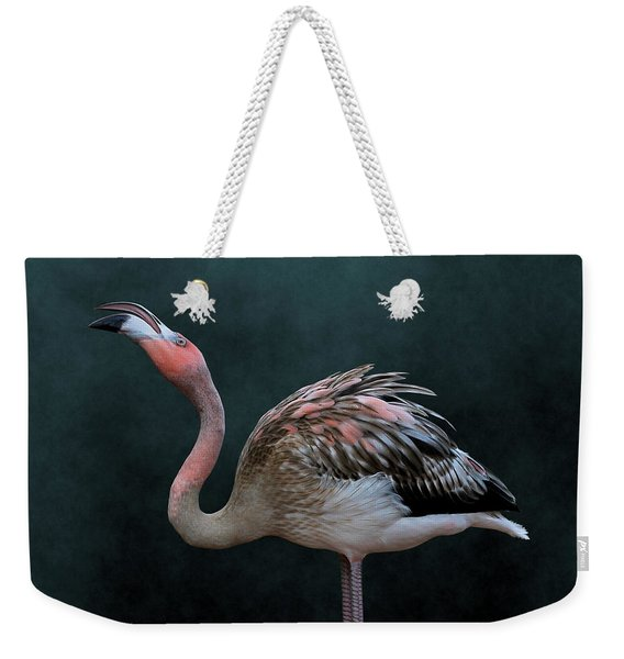 Song Of The Flamingo Weekender Tote Bag