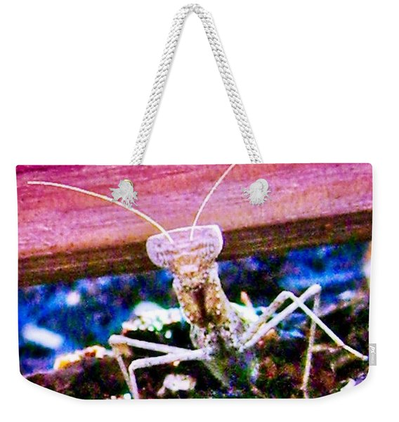 Sonoran Desert Ground Mantis Weekender Tote Bag