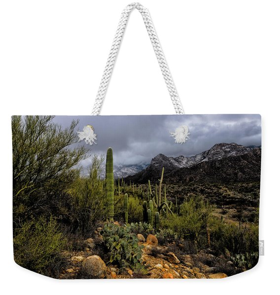 Sonoran Winter No.1 Weekender Tote Bag