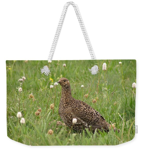 Sooty Grouse In An Alpine Meadow Weekender Tote Bag