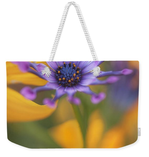 South African Daisy Weekender Tote Bag