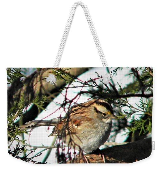 Sparrow In The Snow Weekender Tote Bag