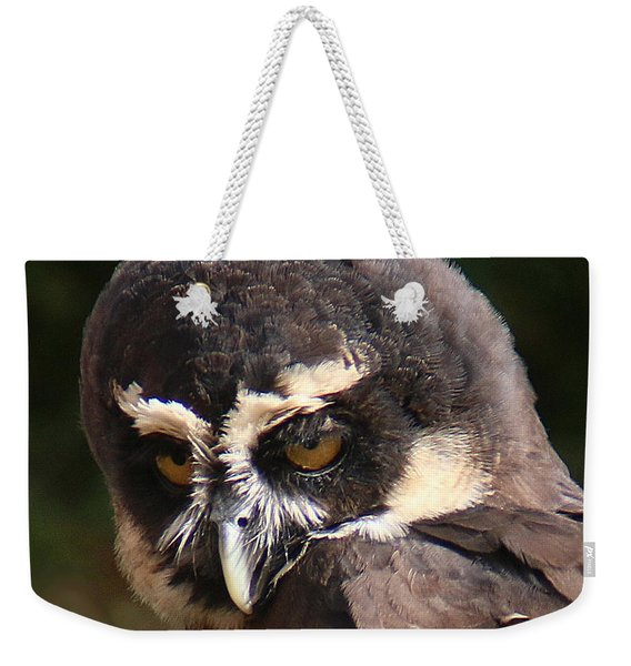 Weekender Tote Bag featuring the photograph Spectacled Owl Portrait 2 by William Selander