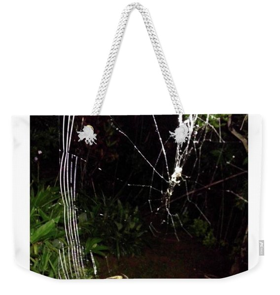 Spiner  From Animall By David Weekender Tote Bag