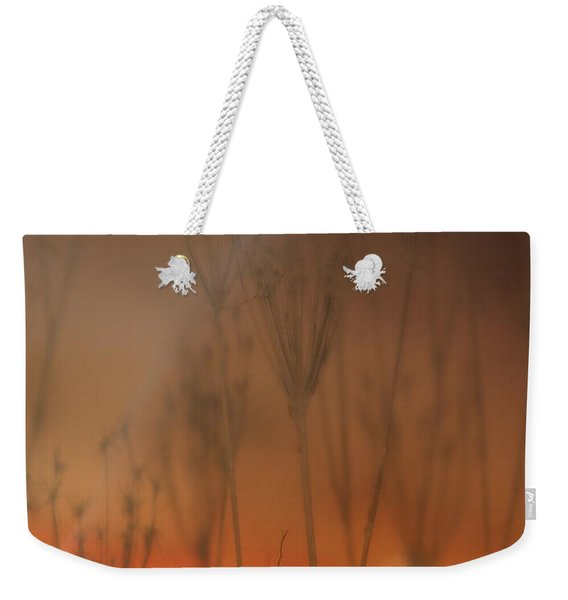 Spirit Of The Land Weekender Tote Bag