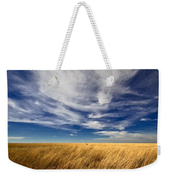 Splendid Isolation Weekender Tote Bag