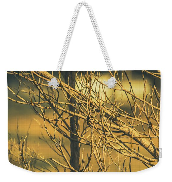 Spooky Country House Obscured By Vegetation  Weekender Tote Bag