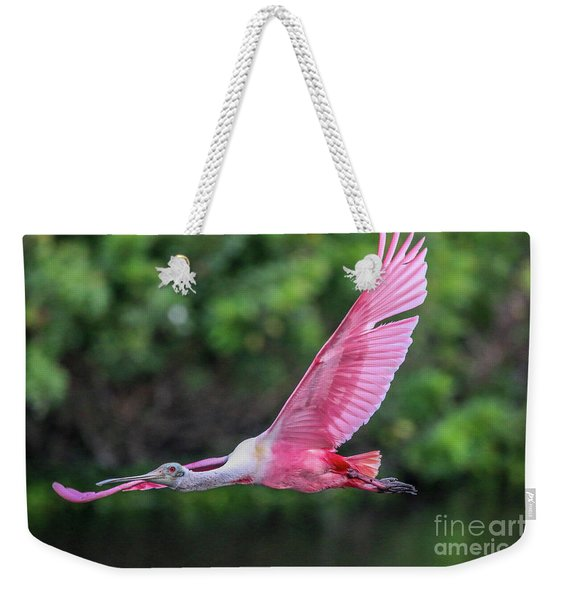 Weekender Tote Bag featuring the photograph Spoony In Flight by Tom Claud
