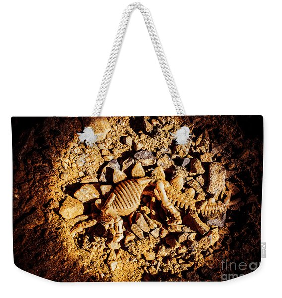 Spotlight On A Extinct Stegosaurus Weekender Tote Bag