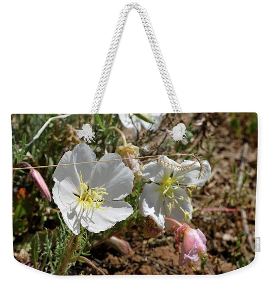 Weekender Tote Bag featuring the photograph Spring At Last by Ron Cline