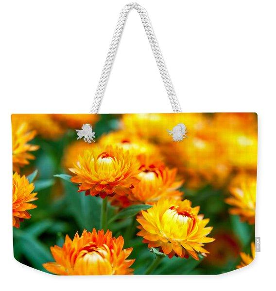 Spring Flowers In The Afternoon Weekender Tote Bag