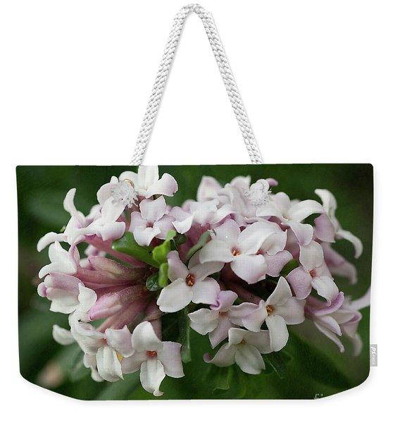 spring Garden -- everblooming Daphne Weekender Tote Bag