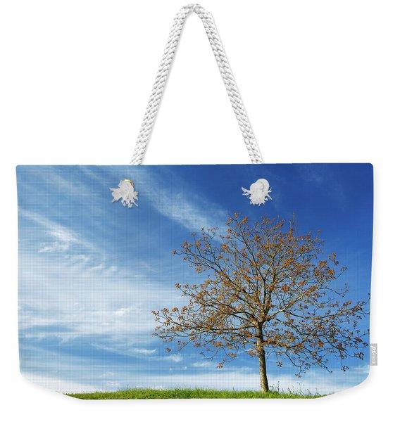 Spring Landscapes Weekender Tote Bag