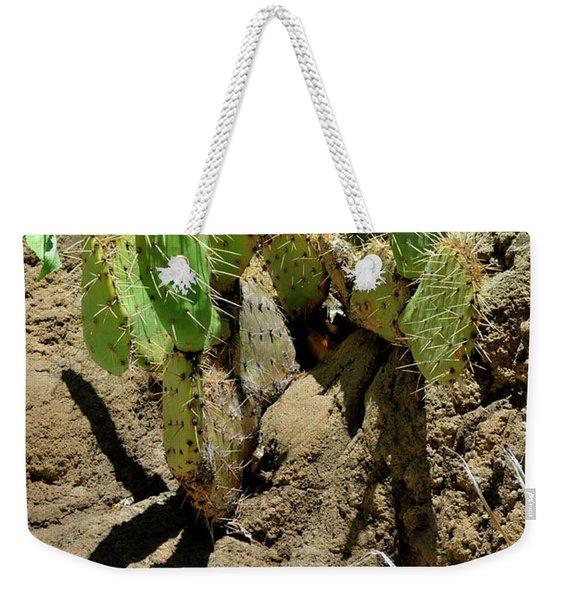 Spring Refreshment Weekender Tote Bag