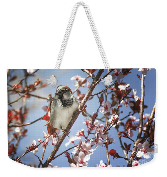 Good Place For A Snack Weekender Tote Bag